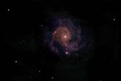 09-Ngc3184-2-2-2012 - 12