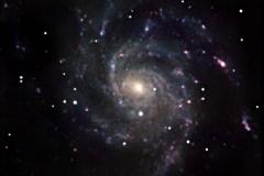 21-M101-16-4-2012 - 26